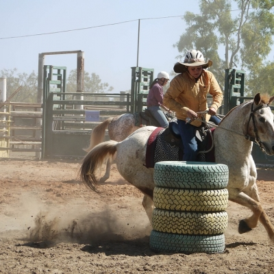 Fossil Downs Rodeo
